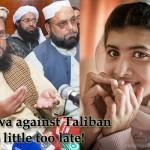 Malala Yousafzai, Fatwa against Taliban